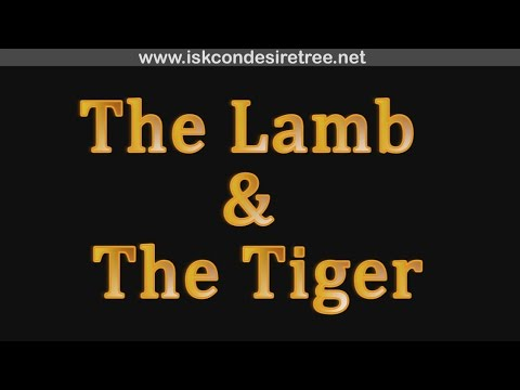 the lamb and the tyger a Blake establishes 'the lamb as an incontrovertible work of religious meaning in choosing the most common of christ allegories for his subject by making this bold choice, blake makes the tyger a poem strictly about the contemplation of a creator, not the creator.
