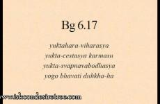 Gita 06.17 – Material regulation cataylzes yogic liberation