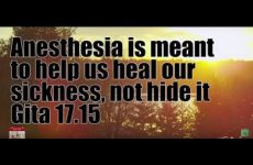Anesthesia is meant to help us heal our sickness, not hide it Gita 17.15