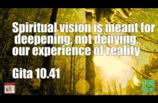 Spiritual vision is meant for deepening, not denying, our experience of reality Gita 10.41