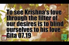 To see Krishna's love through the filter of our desires is to blind ourselves to his love Gita 07.19